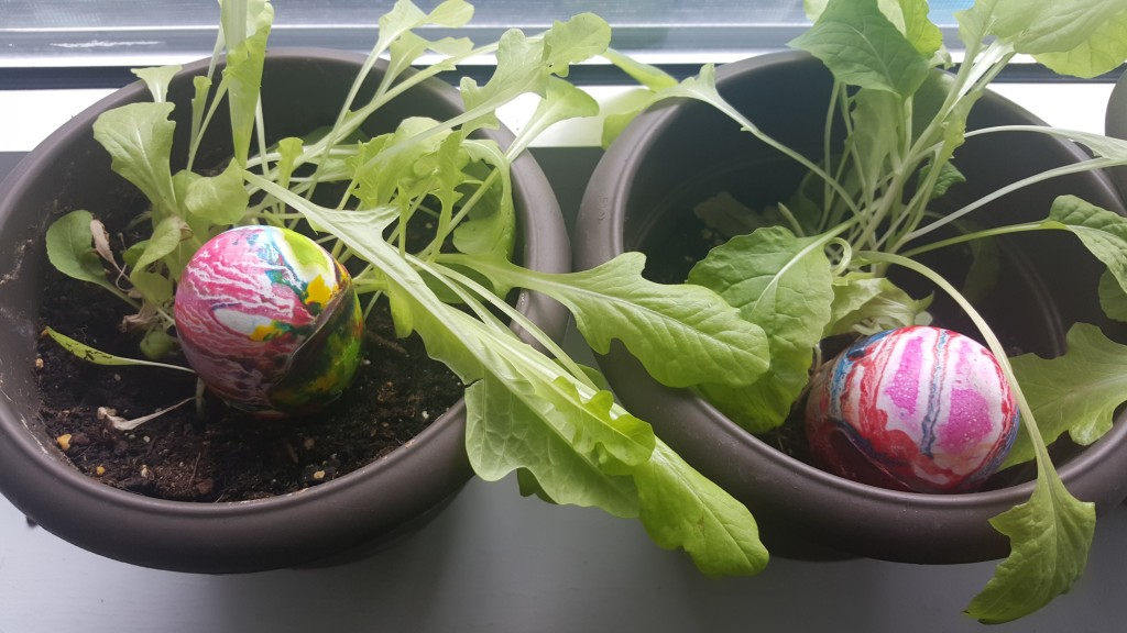 Easter-Planting-04